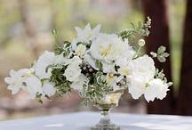 Floral / by Michelle Hansen