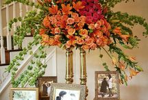 Funeral Arrangements / by liz fernandez