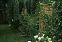 garden / by Heidi Tucker