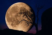 Moon / by Mark Salke