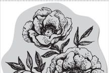 Hero Arts Cling Stamps / by Wendy C