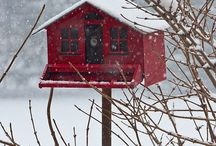 Birdhouses / by Annette Whelan
