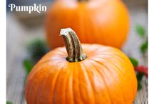 Food: Pumpkin Recipes / by Suheiry Feliciano