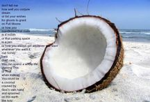 Coconut / by Tosha Silver