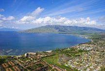 Maui No Ka Oi / Anything Maui! / by Maui Ocean Treasures