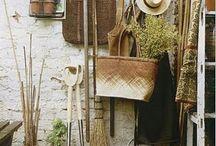 gardening / by Caroline Wyeth