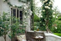 Garden and architecture / by Sam Henderson