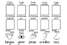 Les 5 sens / by Amélie Marois