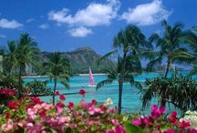Waikiki - Why I Love To Spend Time There! / by Glenn Forman