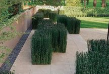 gardens, patio's & terraces ♣ / by Chiel Nobels