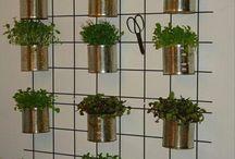 Indoor Herb Gardens / by Ellis Design Group, LLC