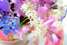Flowers, Beautiful Flowers / by Coupon Clipping Cook