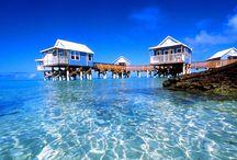 Bermuda / by ✈ 100 places to visit before you die