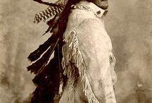 Native Cultures / by Frank Nastro Sr.