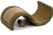 Cat Beds & Furniture / by Andrea Misenti