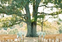 Outdoor ceremony / by Milly Molly Mandy