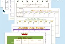 Organizational Printables  / These printables are a great way to help organize your home, your fiances, and your homeschooling day. Plus, most of them are FREE! / by Tiffany from MyLitter.com