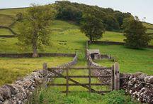 farm ideas / by tammy newell
