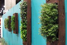 Gardening / by Nitsan Breger (Halevi)
