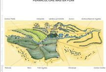 land | permaculture / by tamm adams | provisions farms