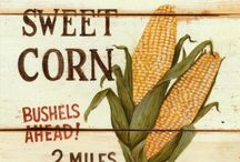 Corn stand / by The Farmerette