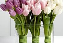 Flower Arrangements / by Angela Jarrett