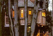 Treehouses / by Larene D