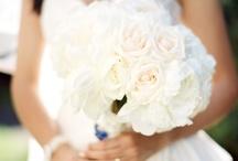 Wedding Stuff / by Lauren Nacole