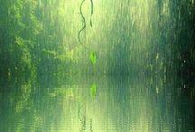 Amazing Weather / by Donna Maukonen