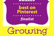 pinterest - The Best / by clara lauber