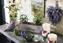 Summer Decorating Ideas / by All is Amazing