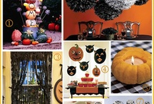 fall&halloween / by Maeve Drake-Lavelle