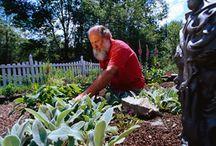 Gardening Ideas / by Donna Reynolds