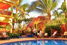 Places To Go -Mexico / Discover the fascinating world of Mexico. There are several hidden treasure just waiting to be explored. Ancient Aztec pyramids, authentic foods and fantastic shopping. Whether you're looking to visit past civilizations or simply lay on the beach and work on your golf game. Mexico can accommodate. / Contact us @ info@wildcanadasalmon.com to receive your **20% OFF E-Coupon** / by WildCanadaSalmon.com