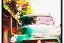 Rustic Trucks / by Rhonda