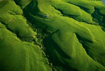 Flint Hills National Scenic Byway / by Kansas Byways