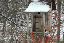 Birdhouses and Feeders  / by Florence Luis