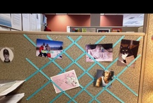 Cubicle decor / by Holly Gehman