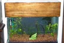 Aquarium / fish tank stuff / by Sherry Leonard