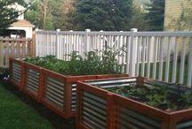 backyard ideas / by Kimberly Hornback