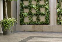 Vertical Gardens / by Jennifer Tippett