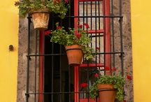 Windows,doors, courtyards / by Kris Gamil