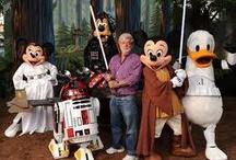 Walt DisneyWorld / by PopWrapped