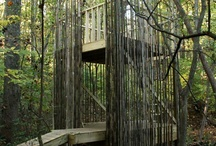 Treehouses and Playforts / by Shelby Rice
