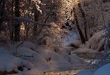 Nature's Glory / by Danielle Malinowski