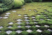 Gardens / by Liselle Chisenhale-Marsh (Gaynes Park)