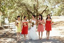 Real Wedding: Vineyard Wedding / by Shannon Leahy Events