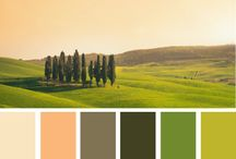Tuscany Inspiration Board / by Anita Phillips