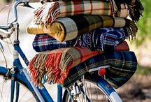 Plaid / by Dee Lesina