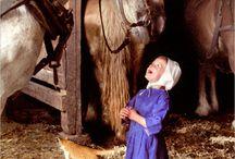 Amish Life. / by Elisa